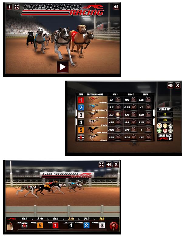 greyhound_racing